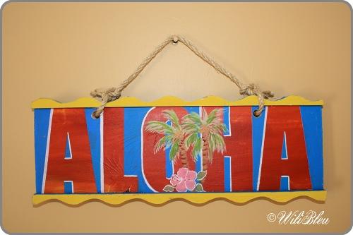 Aloha_sign